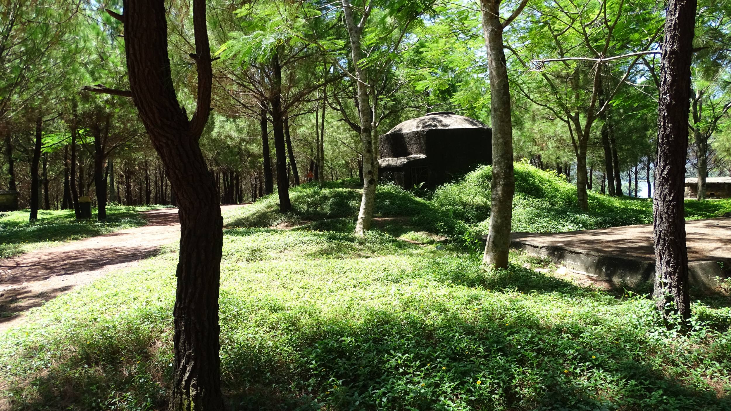 Old bunkers inside a pine forest at the top of Vong Canh Hill near Hue