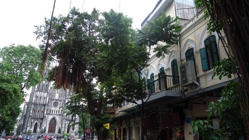 Oriental trees, a colonial house with green shutters and neogothic St. Joseph Cathedral in the background