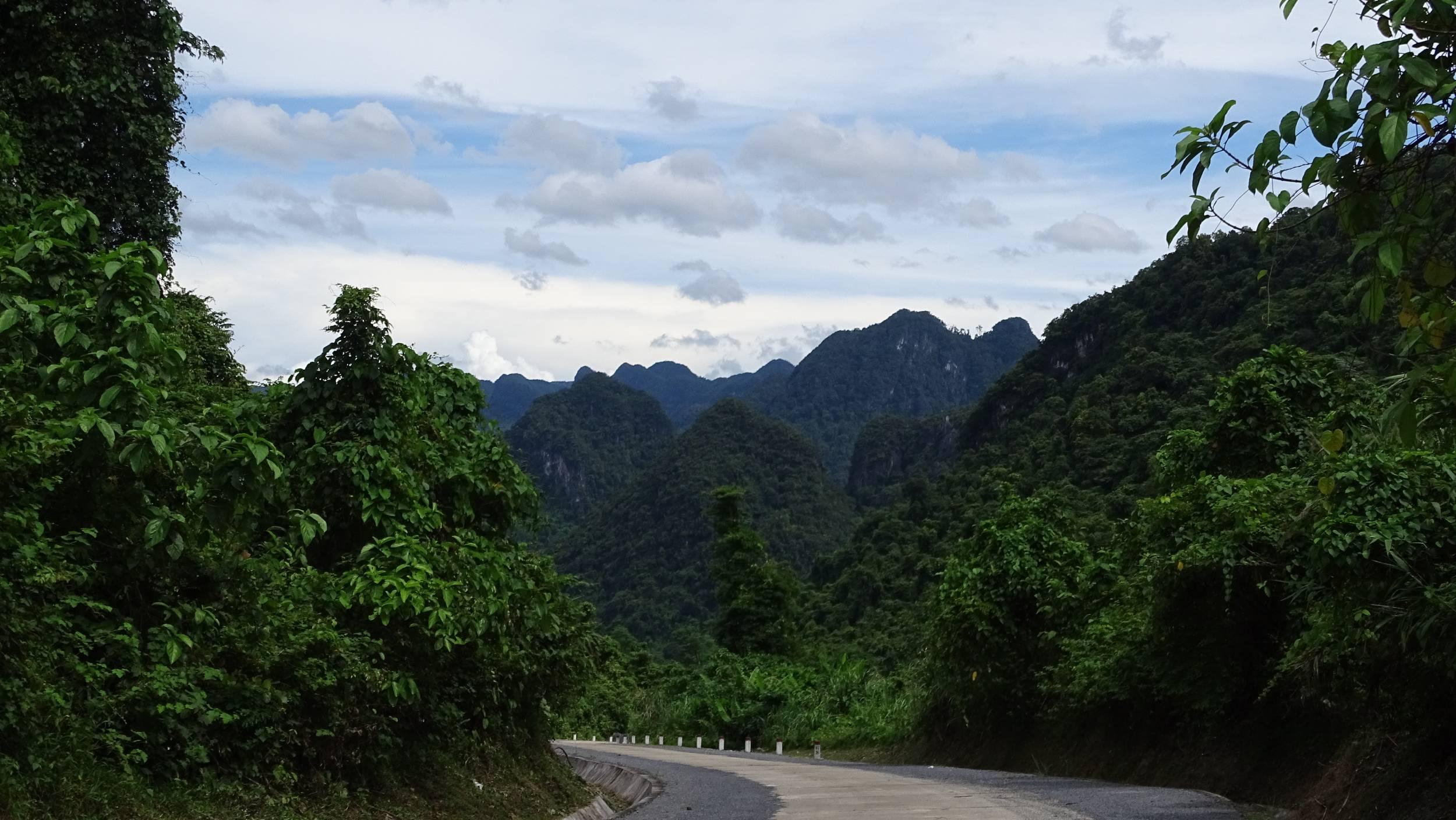 Comb shaped rocks  covered in greenery in Phong Nha Ke Bang National Park