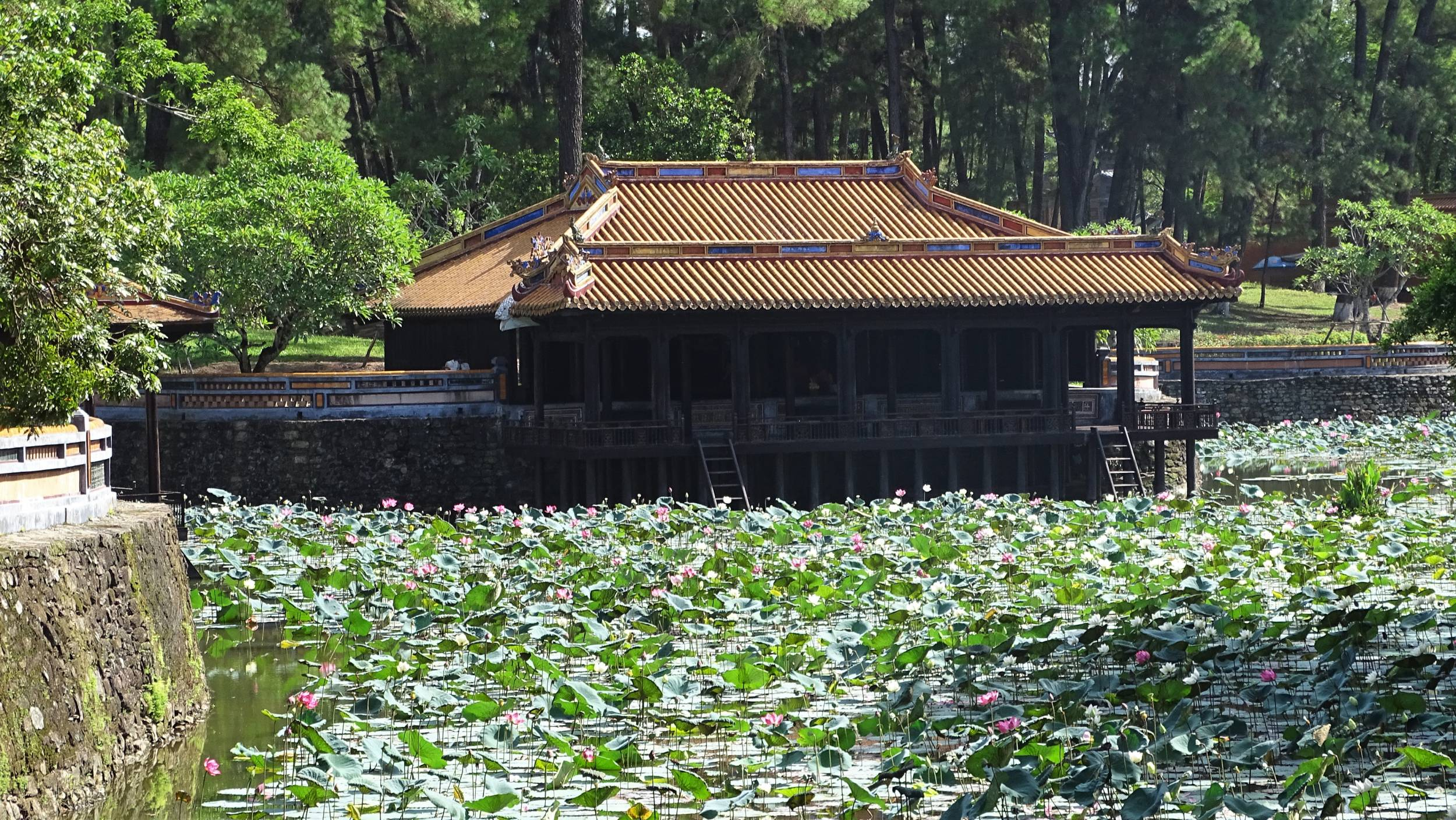 A wooden pavilion on a pond full of lotus flowers at the Tu Duc tomb