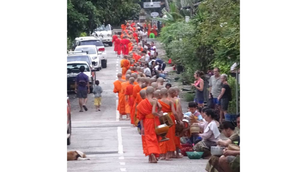 A long line of clean-shaven monks taking alms from the inhabitants of Luang Prabang in Laos