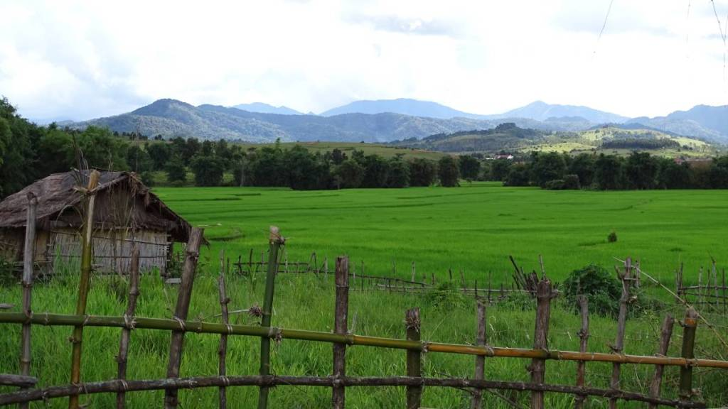 A bamboo fence, a wooden hut, green paddy fields and mountains in the Laotian countryside