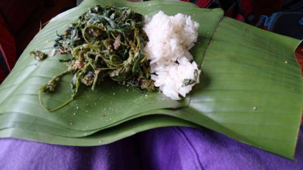 A banana leaf with green leaf vegetable and a lump of sticky rice spread on the knees