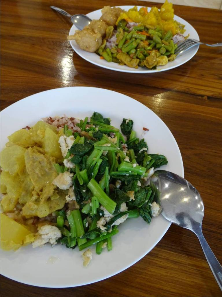 Two plates with various vegan dishes, including tofu, mock meat and greens