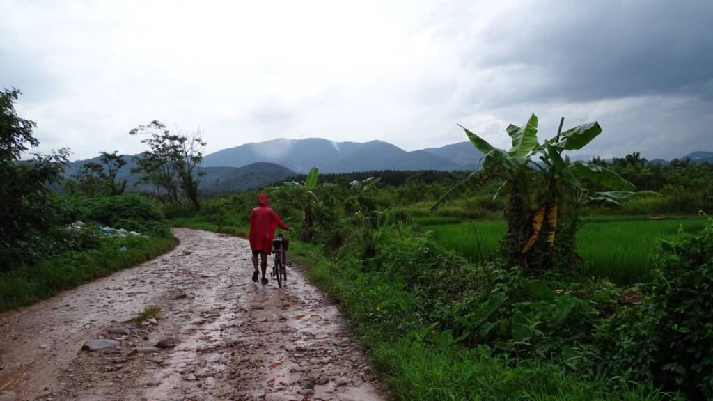 A cyclist wearing a red poncho leads his bike on a muddy road, leading among paddy fields towards the mountains in the distance