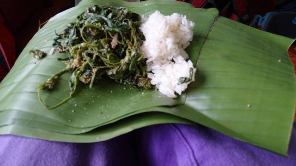 Leafy greens with sticky rice on a banana leaf- Laotian vegan street food