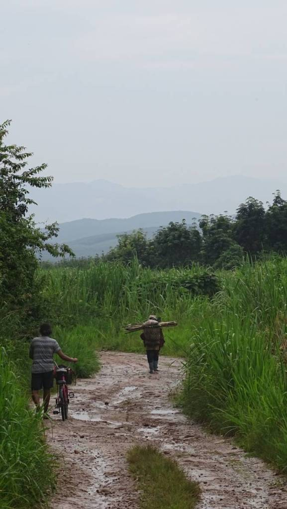 Two women wearing rubber boots carry baskets full of wood, followed by Sayak leading a bike. They walk on a muddy road among tall grasses