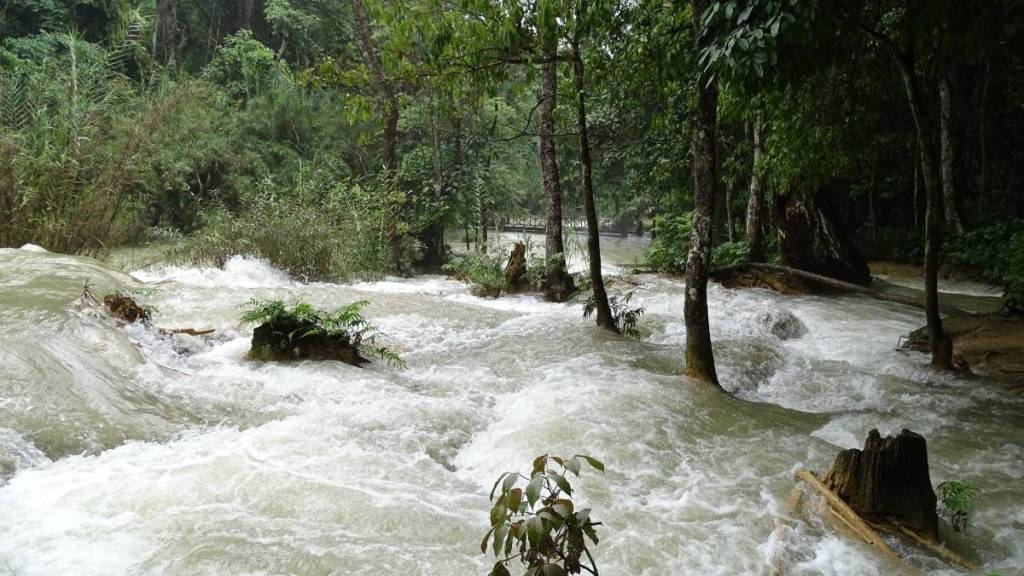 The swollen, fast-flowing river overflowing part of the forest just under the Muang Si waterfalls in Laos