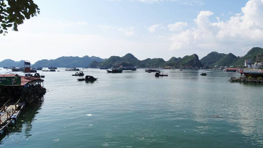 The pier at Cat Ba island with lots of small rowing boats and green karst rocks rising form the sea in the background
