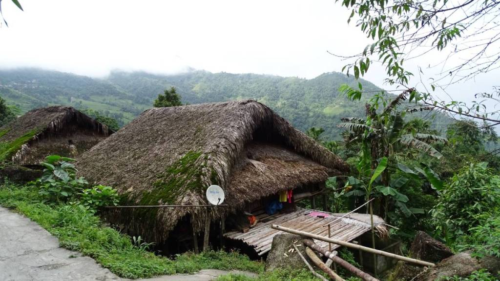 Moss-covered thatched roof houses standing on a steep slope in Khuoi My village near Ha Giang, forest-clad mountains behind