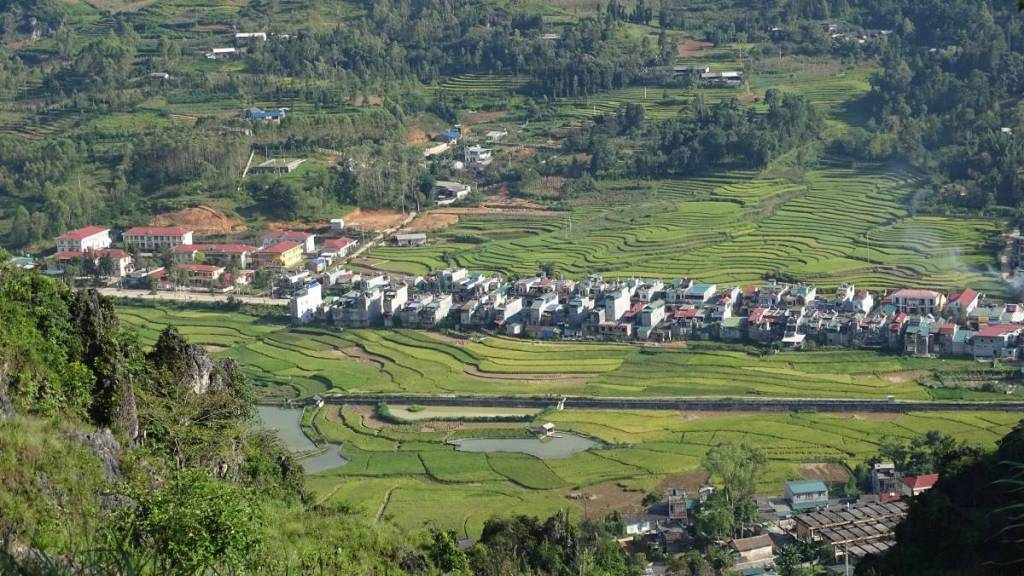 Dong Van from above: houses lines along the road and the terraced paddies stretching out to the edges of the valley