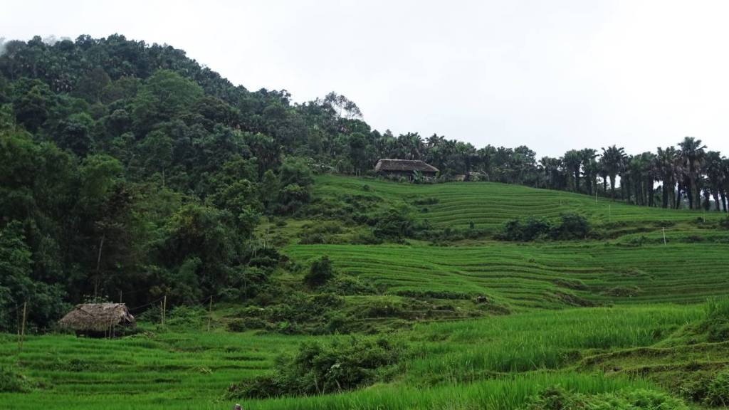 A few traditional huts among the terraced rice fields and the fringing forest on the way to Khuoi My village