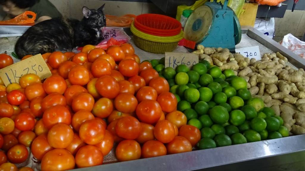 A cat sitting at the stall with tomatoes, limes and ginger at the Chow Kit market in Kuala Lumpur