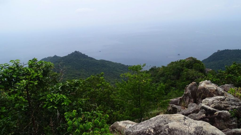 A view from the top of the hill at Koh Tao's forested east coast