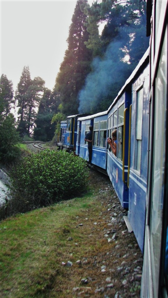 Steam toytrain snaking its way on the narrow-gauge Darjeeling Himalayan Railway