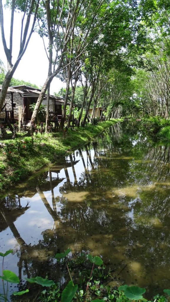 basic stilt bungalows, trees and long, shallow ponds in our accomodation in Koh Lanta