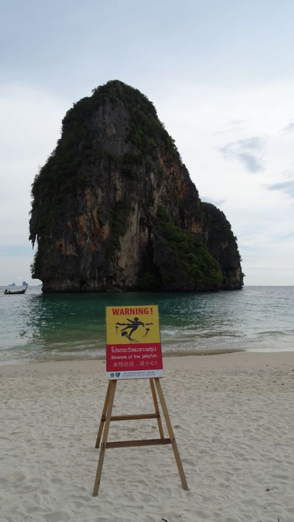 A warning sign board about jellyfish in Phra nang beach with a karst formation in the water in background