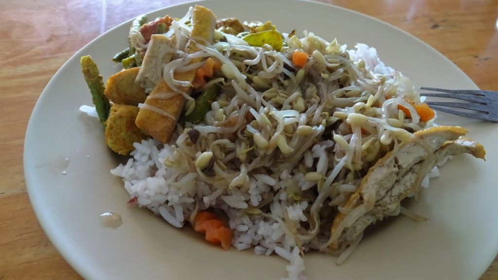 A plate of rice,vegetables, tofu and bean sprout