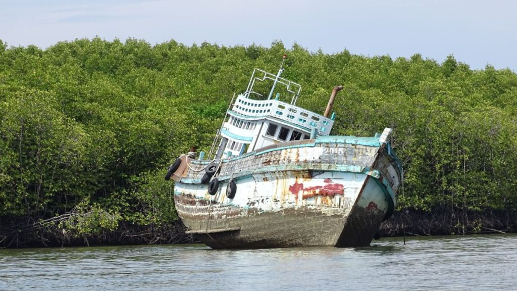 An abandoned , tilted boat stranded in mangrove of krabi river