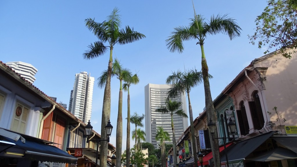 Tall palm trees lining the row of colourfully painted historical buildings at the Arab Quarter in Singapore