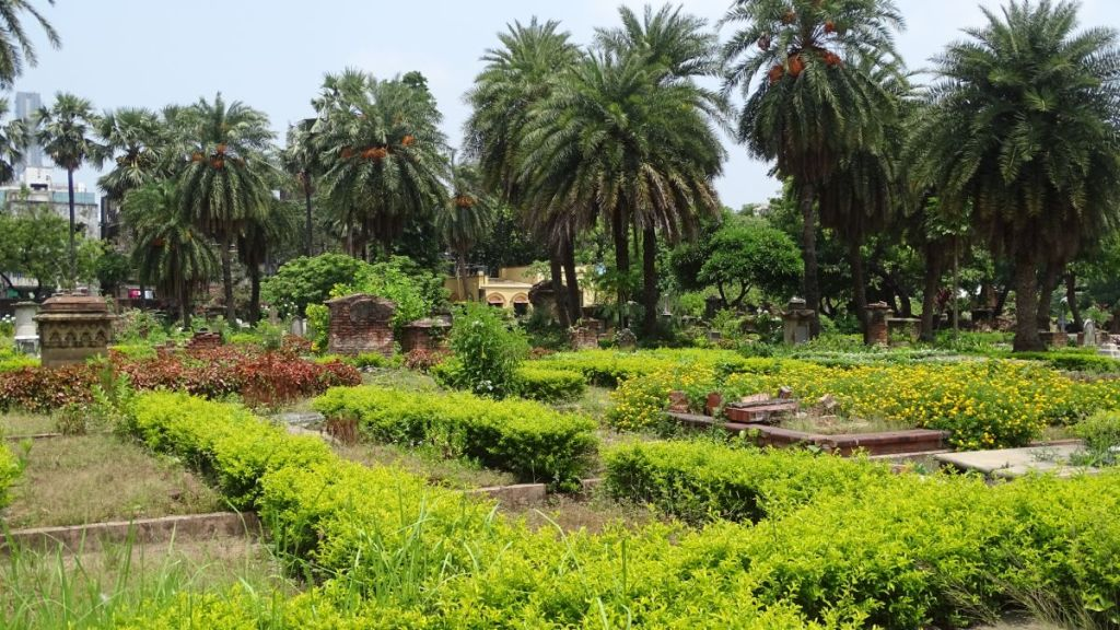Palms and green grass growing among the old tombs at the Scotish Cemetery in Kolkata