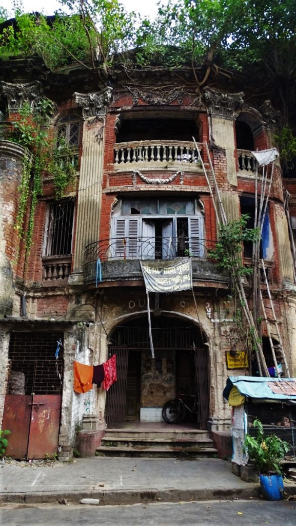 A dilapidated brick building in north Kolkata with once beautiful facade featuring columns and balcony now has trees growing on its roof