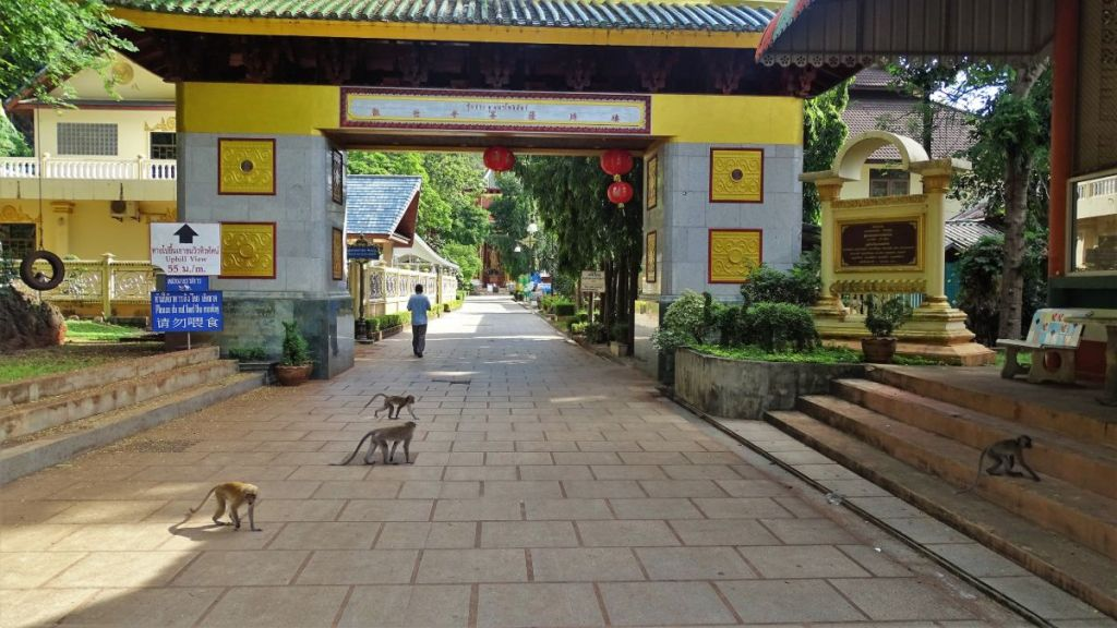 Few monkeys in front of the (chinese architecture) gate at the base of the tiger cave temple