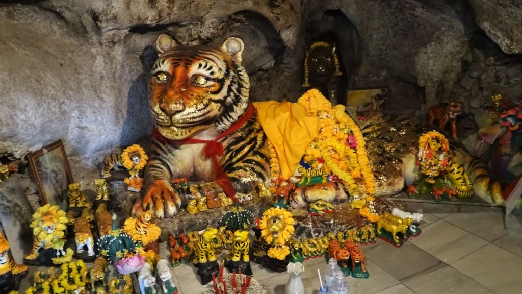 A big statue of lying tiger is worshipped inside tiger cave temple in Krabi