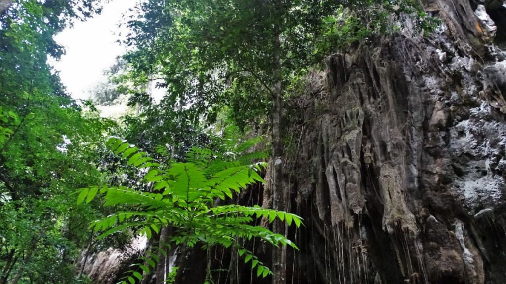 Rock formation in the jungle of tiger cave temple, krabi
