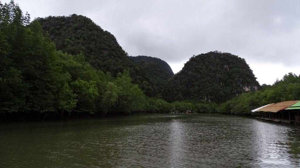 River with mangrove and beautiful karst formations in background in Krabi