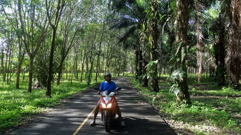Sayak riding a scooter on asphalt road in the middle of plantation