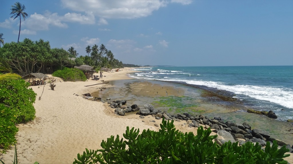 A white sand beach, green plants and palms trees stretch for miles in Tangalle, Sri Lanka
