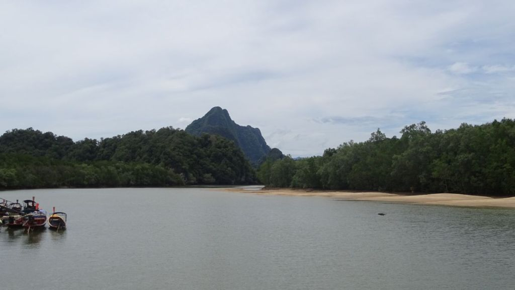 Mangrove forest, few boats and a karst formation in the background