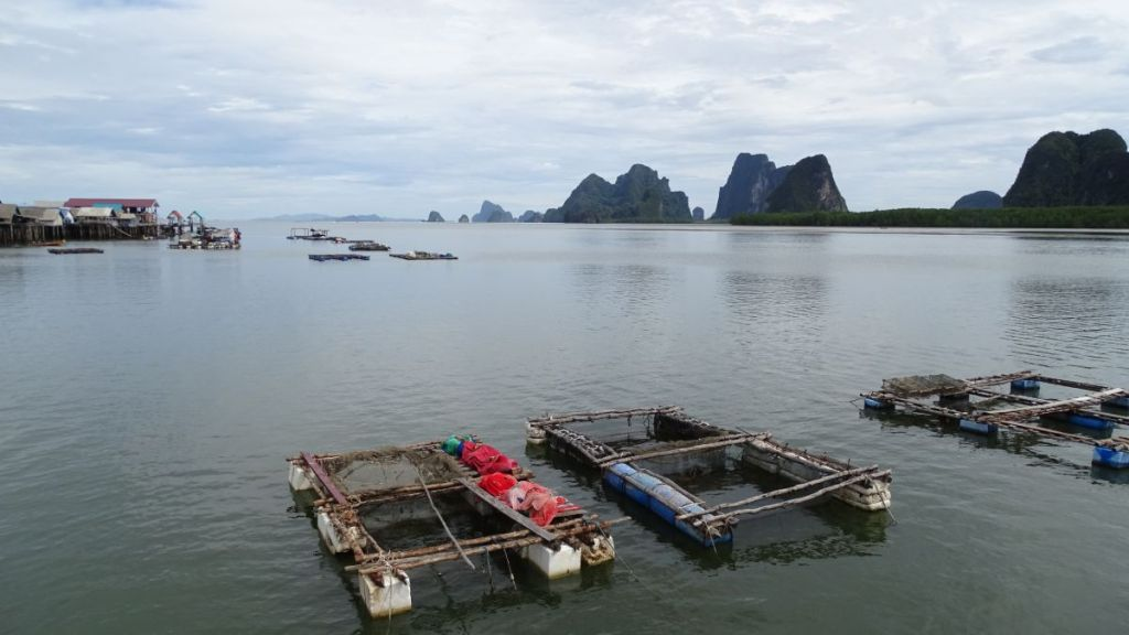 floating fish farms in the sea with karst formations in the background