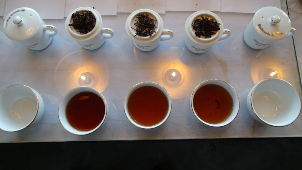 A tray with tea cups containing various tea kinds and cups with loose tea leaves at tea tasting in Nuwara Eliya, Sri Lanka