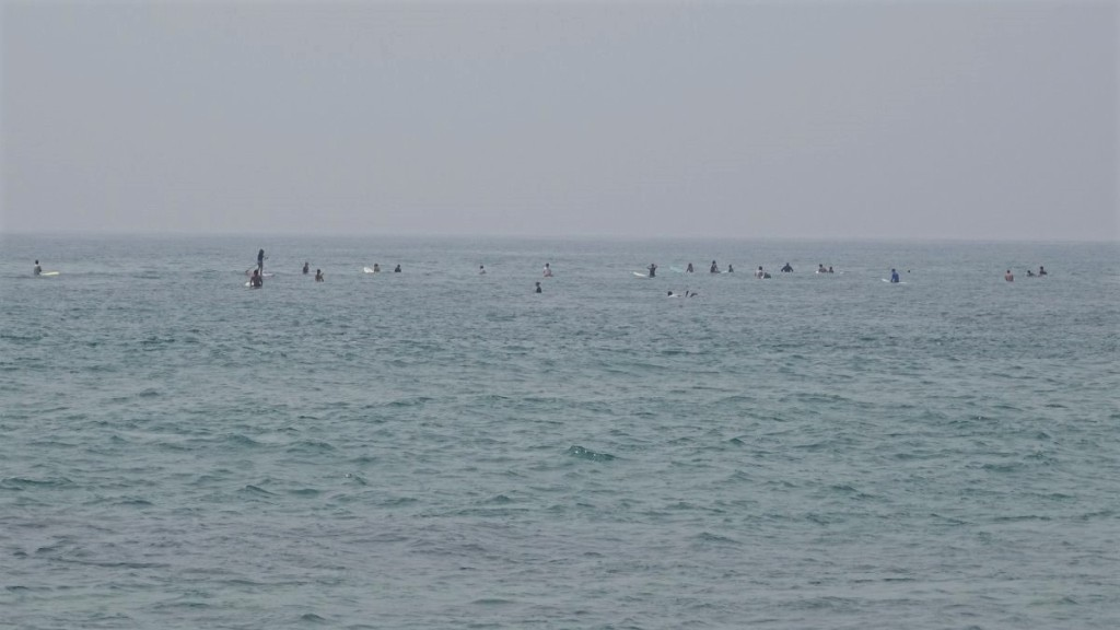 Dozens of surfers sitting on their boards wait on a flat sea for the next wave in Midigama, Sri Lanka.