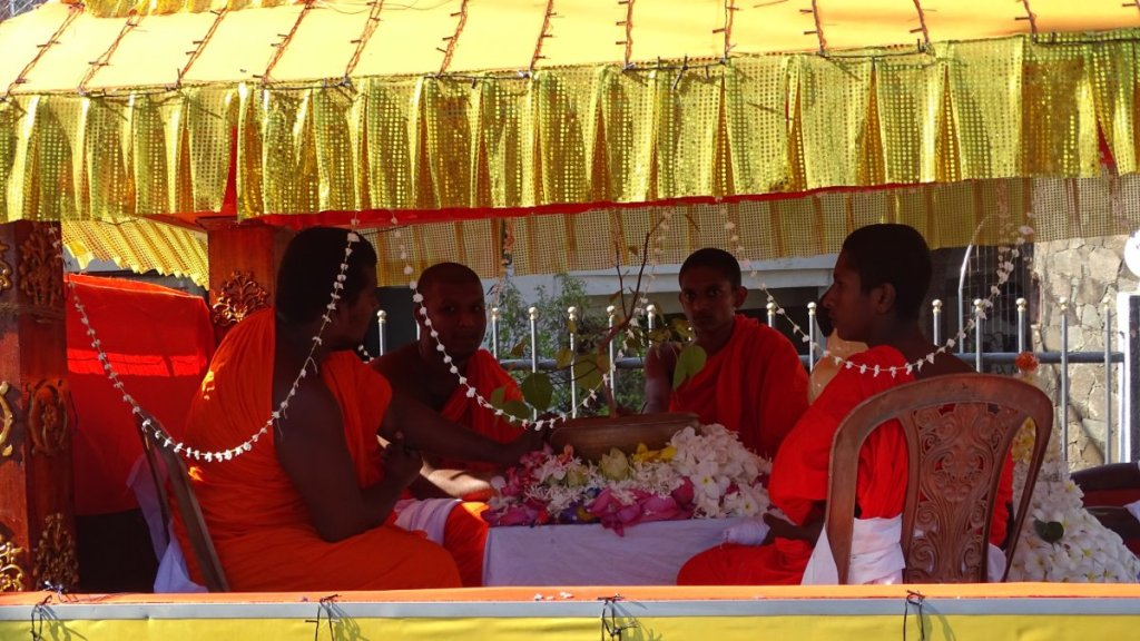 Buddhist monks in orange robes sit around a sapling of bodhi tree, transported in a decorated truck during January Poya procession in Sri Lanka