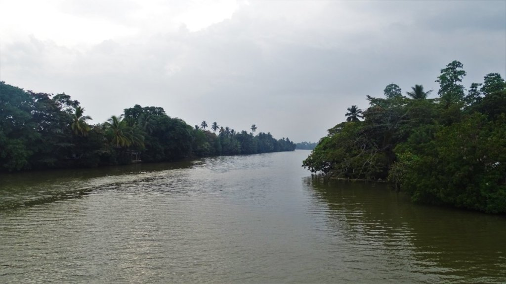 Wide, green watered Nilvala Ganga river in Matara, lined on both sides with thick greenery