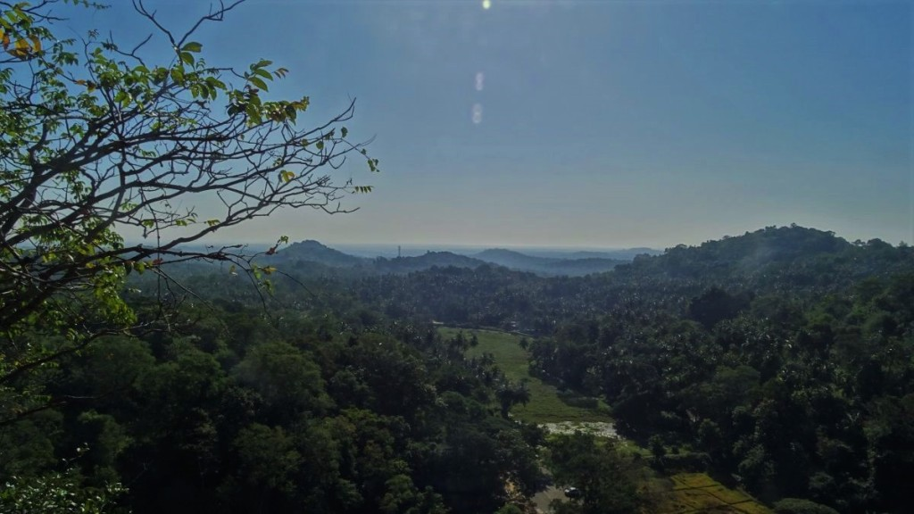 A view from Mulkirigala temple upper terrace at the hills covered with trees and paddy fields.
