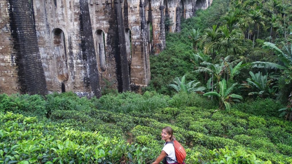 Author standing among tea shrubs undereath a railway viaduct called Nine Arch Bridge in Ella