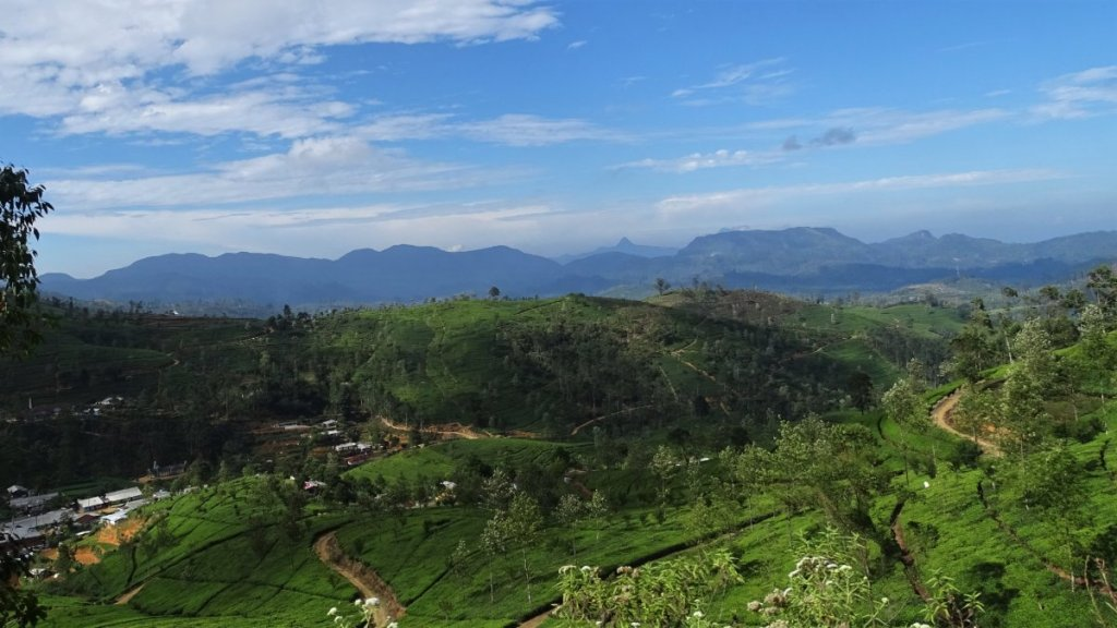 Panoramic views on rolling hills covered with tea gardens and a high mountain range spanning on the horizon on Ella - Kandy railway route
