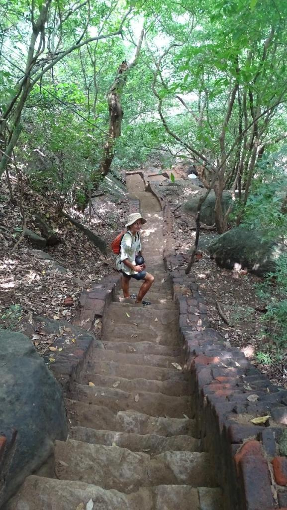 The author walking up the narrow, stone stairs to the top of Pidurangala rock