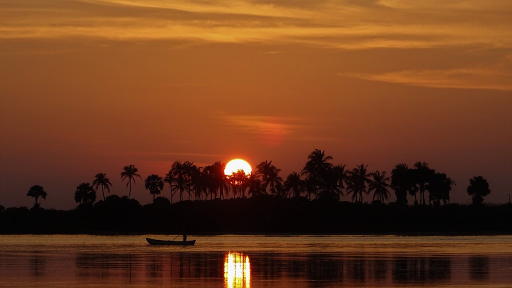 An outline of coconut palms and a fisherman on a boat against the orange sky and a setting sun in Puttalam Lagoon, Kalpitiya