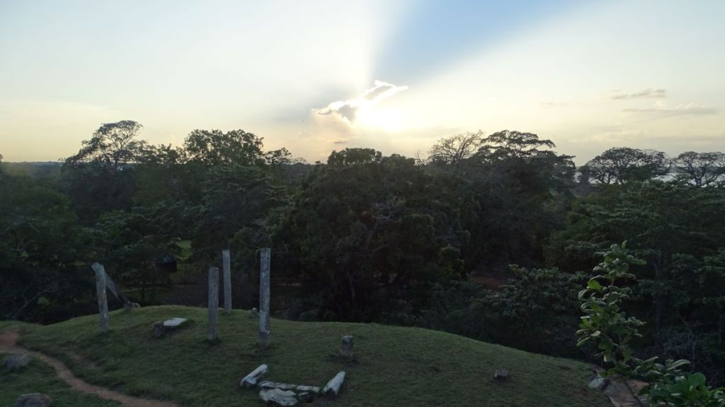 A few columns surrounded with trees is all that is left of Vessagirya monastery in Anuradhapura