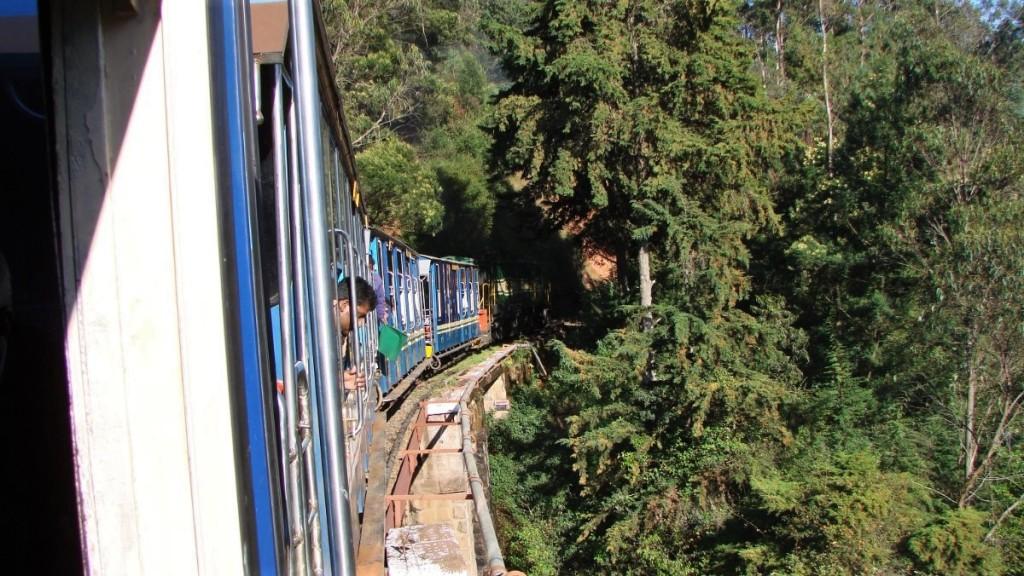 A colourful, narrow-gauge train psses through a forest on Nilgiri Mountain Railway