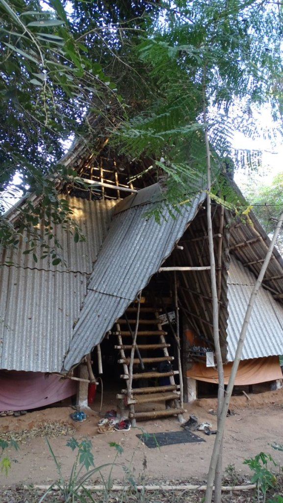 A makeshift hut with a tin roof serves as the headquarters of Sadhana Forest volunteering project in Auroville