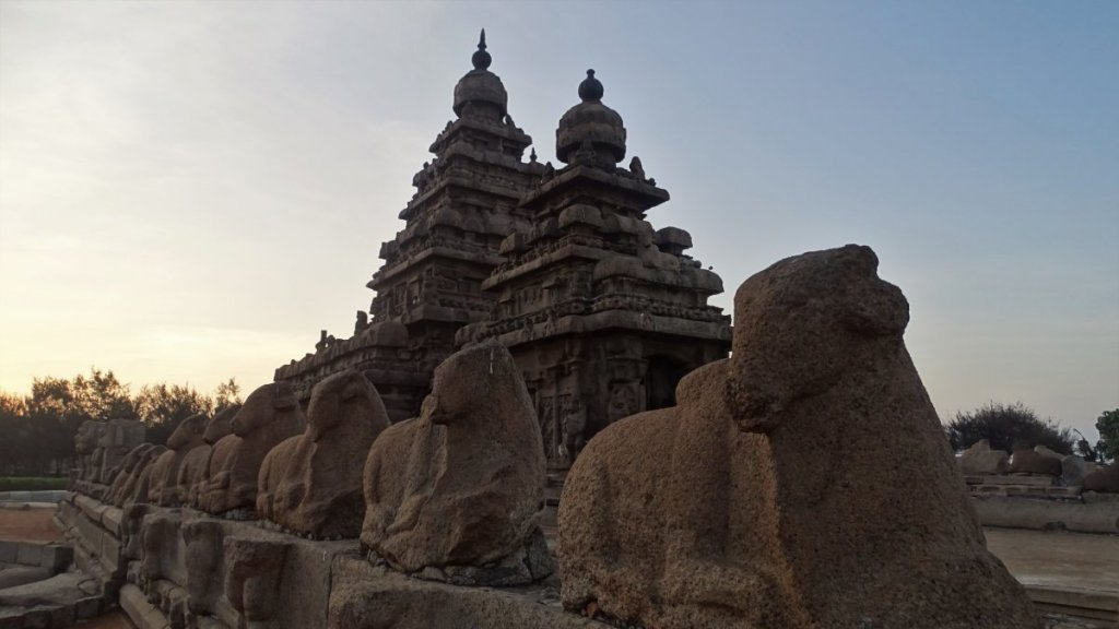 A row of bull statues stands in front of a stone temple with double pyramidal tower in Mamallapuram