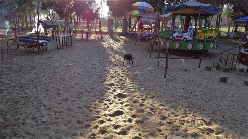 Carousels, snack stalls and stray dogs on a beach near Tiger Cave in Mamallapuram, Tamil Nadu.